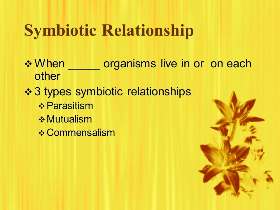 Symbiotic Relationship When _____ organisms live in or on each other 3 types symbiotic relationships Parasitism Mutualism Commensalism When _____ orga