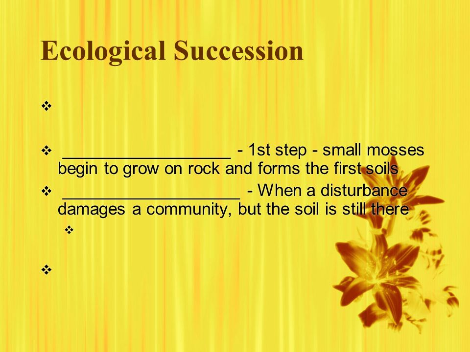 Ecological Succession __________________ - 1st step - small mosses begin to grow on rock and forms the first soils ___________________ - When a distur