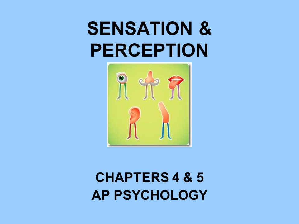 SENSATION & PERCEPTION CHAPTERS 4 & 5 AP PSYCHOLOGY