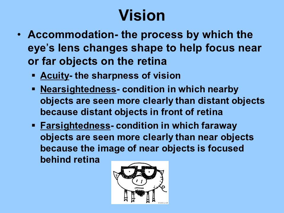 Vision Accommodation- the process by which the eyes lens changes shape to help focus near or far objects on the retina Acuity- the sharpness of vision
