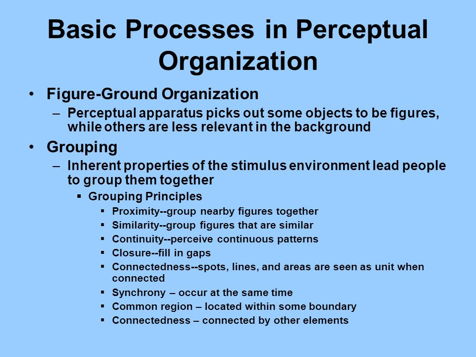 Basic Processes in Perceptual Organization Figure-Ground Organization –Perceptual apparatus picks out some objects to be figures, while others are les