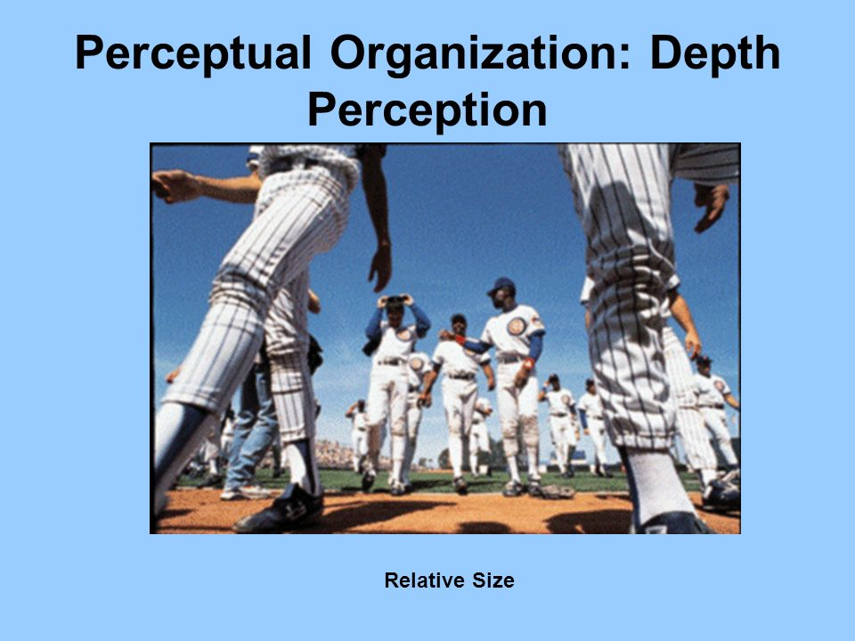 Perceptual Organization: Depth Perception Relative Size