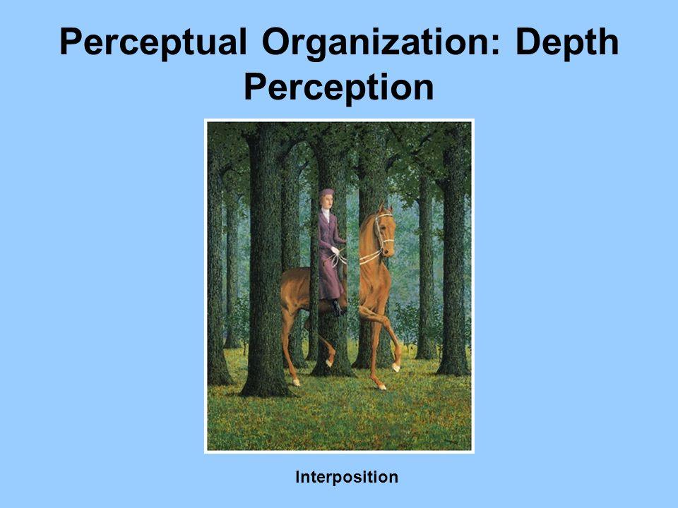 Perceptual Organization: Depth Perception Interposition
