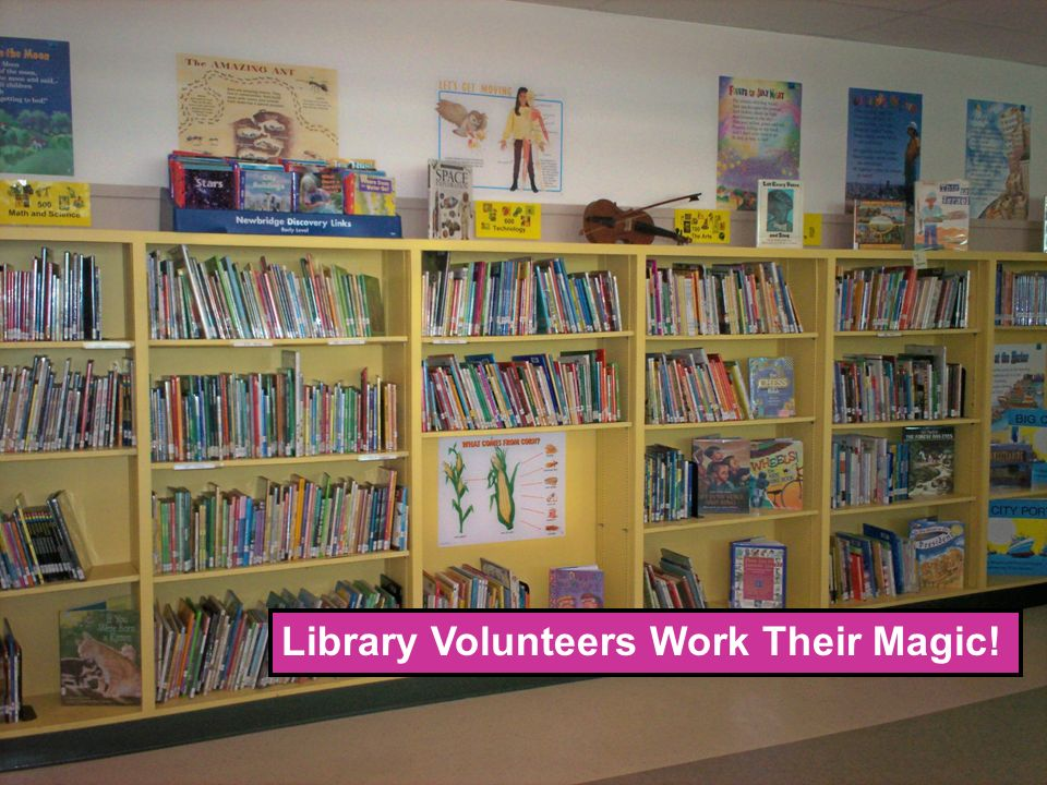 Library Volunteers Work Their Magic!