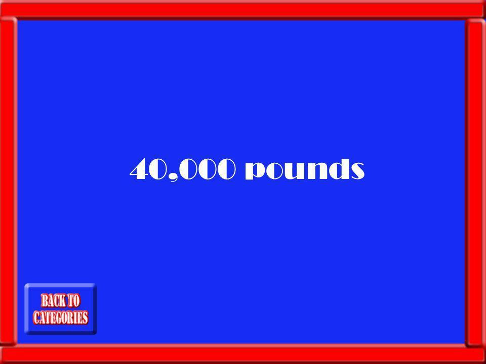 Megs weight