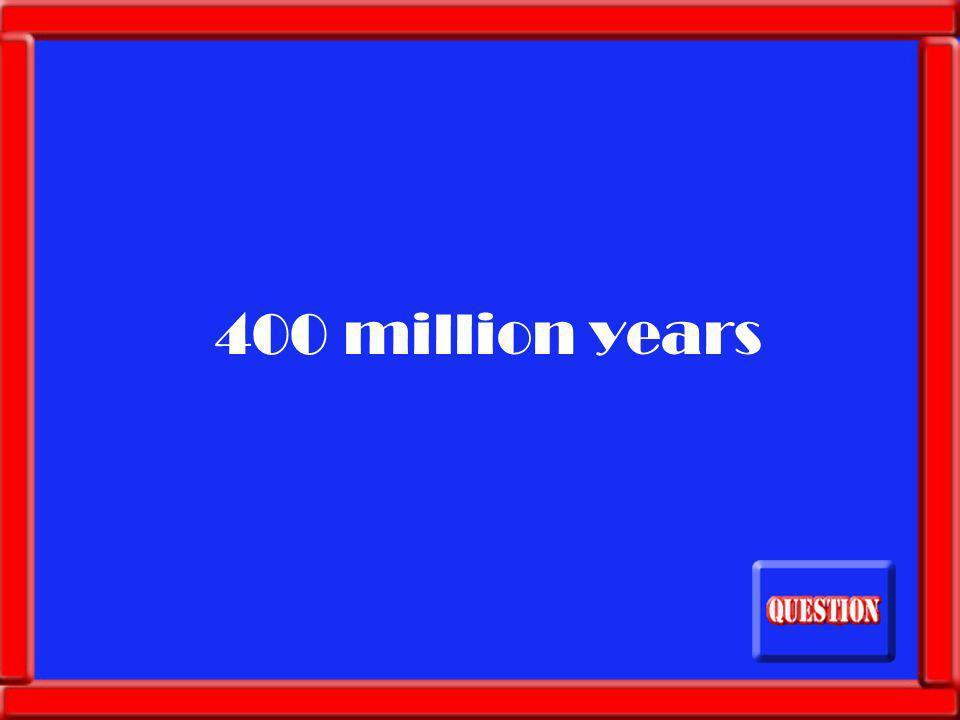 40,000 pounds
