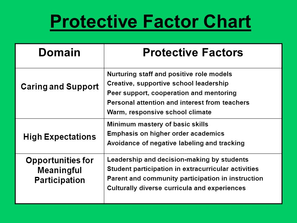 Protective Factor Chart DomainProtective Factors Caring and Support Nurturing staff and positive role models Creative, supportive school leadership Peer support, cooperation and mentoring Personal attention and interest from teachers Warm, responsive school climate High Expectations Minimum mastery of basic skills Emphasis on higher order academics Avoidance of negative labeling and tracking Opportunities for Meaningful Participation Leadership and decision-making by students Student participation in extracurricular activities Parent and community participation in instruction Culturally diverse curricula and experiences