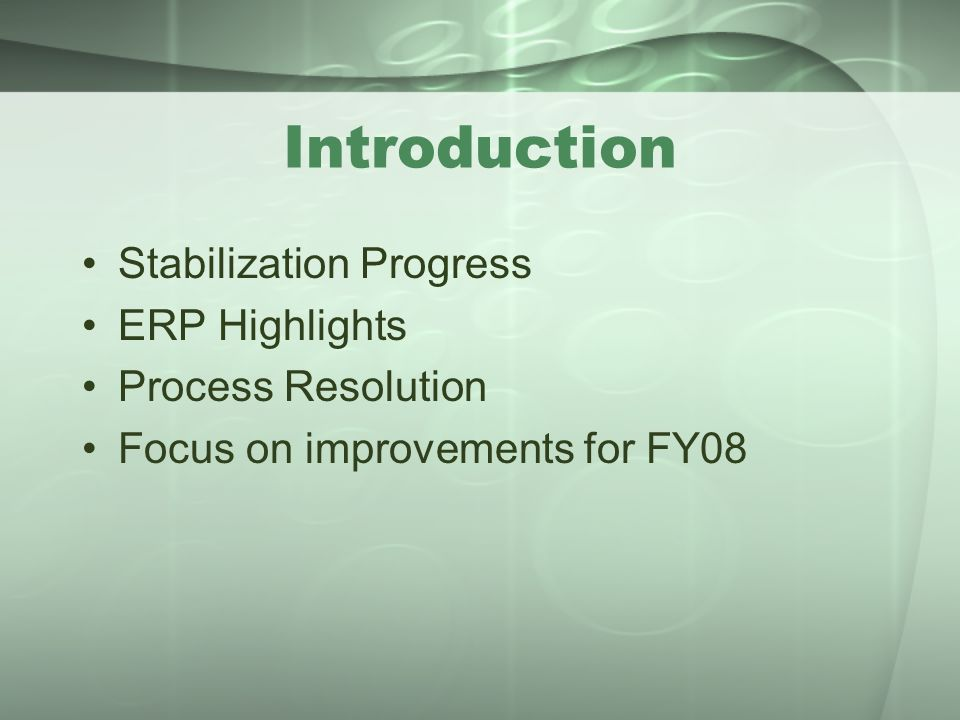 Introduction Stabilization Progress ERP Highlights Process Resolution Focus on improvements for FY08