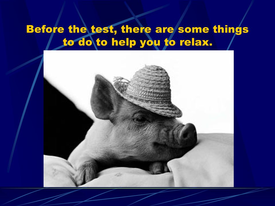Before the test, there are some things to do to help you to relax.