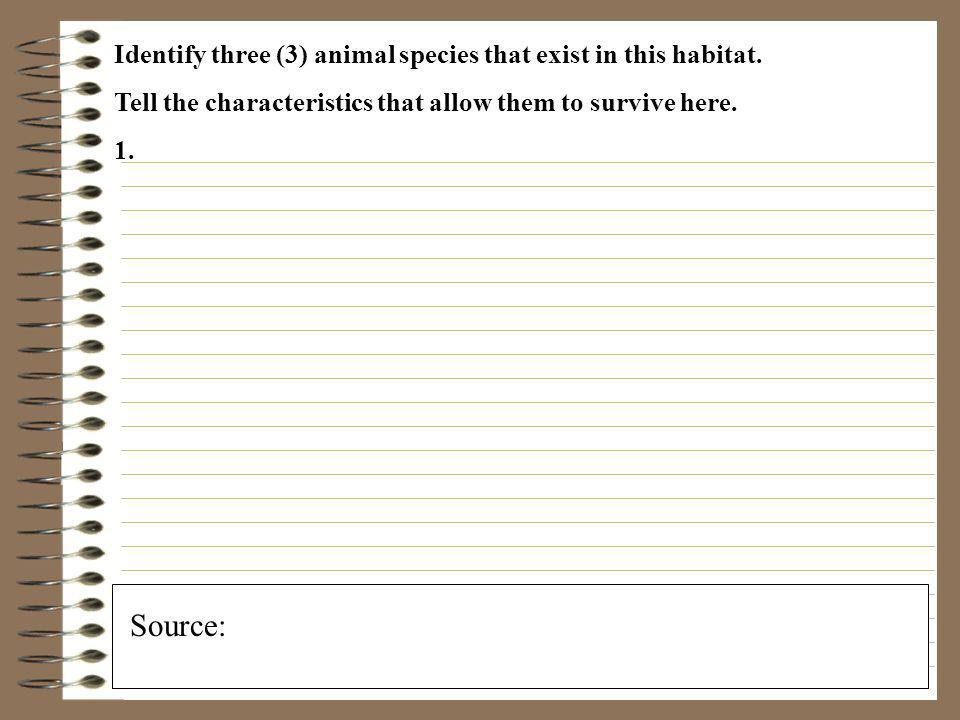 Identify three (3) animal species that exist in this habitat.