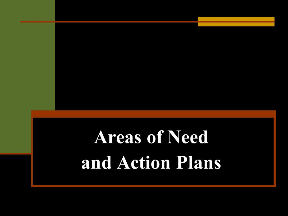 Areas of Need and Action Plans