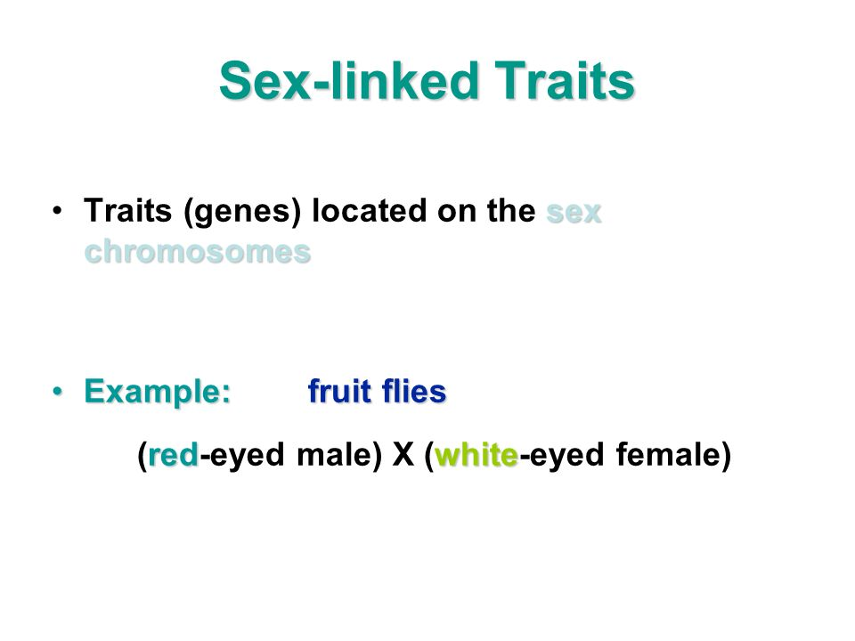 Sex-linked Traits sex chromosomesTraits (genes) located on the sex chromosomes Example:fruit fliesExample:fruit flies redwhite (red-eyed male) X (whit