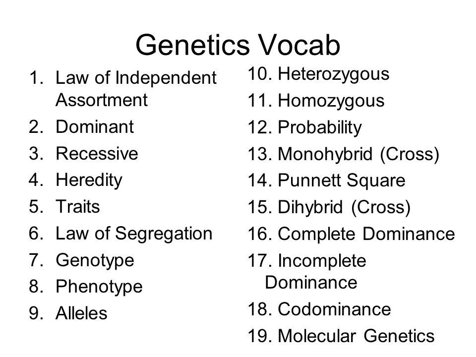Genetics Vocab 1.Law of Independent Assortment 2.Dominant 3.Recessive 4.Heredity 5.Traits 6.Law of Segregation 7.Genotype 8.Phenotype 9.