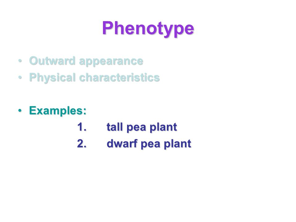 Phenotype Outward appearanceOutward appearance Physical characteristicsPhysical characteristics Examples:Examples: 1.tall pea plant 2.dwarf pea plant