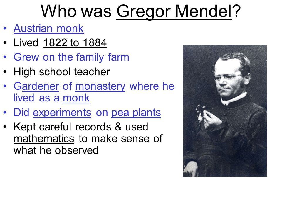 Who was Gregor Mendel? Austrian monk Lived 1822 to 1884 Grew on the family farm High school teacher Gardener of monastery where he lived as a monk Did