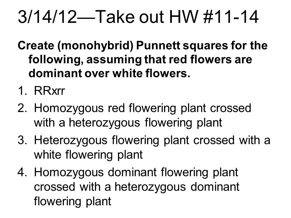 3/14/12Take out HW #11-14 Create (monohybrid) Punnett squares for the following, assuming that red flowers are dominant over white flowers. 1.RRxrr 2.