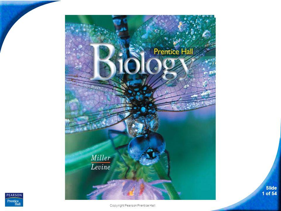 Slide 1 of 54 Copyright Pearson Prentice Hall biology