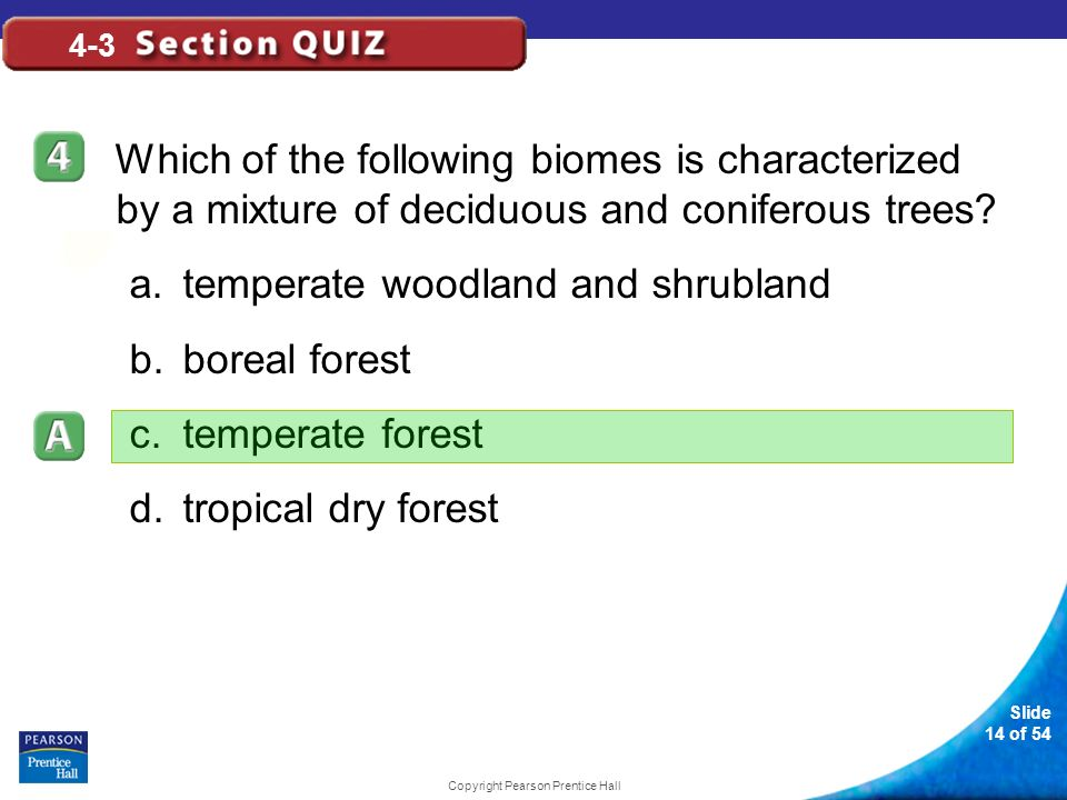 Slide 14 of 54 Copyright Pearson Prentice Hall 4-3 Which of the following biomes is characterized by a mixture of deciduous and coniferous trees? a.te
