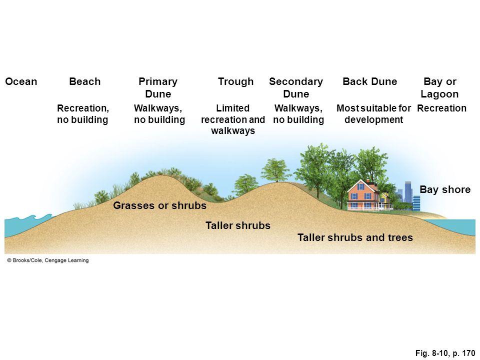 Fig. 8-10, p. 170 OceanBeachPrimary Dune TroughSecondary Dune Back DuneBay or Lagoon Recreation, no building Walkways, no building Limited recreation