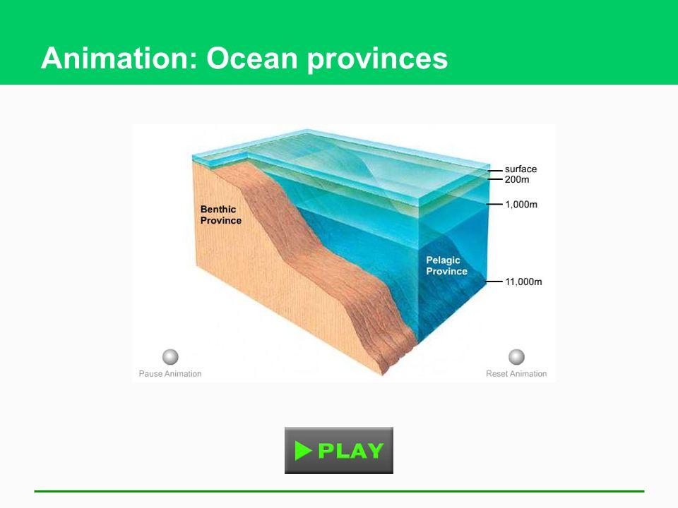 Animation: Ocean provinces