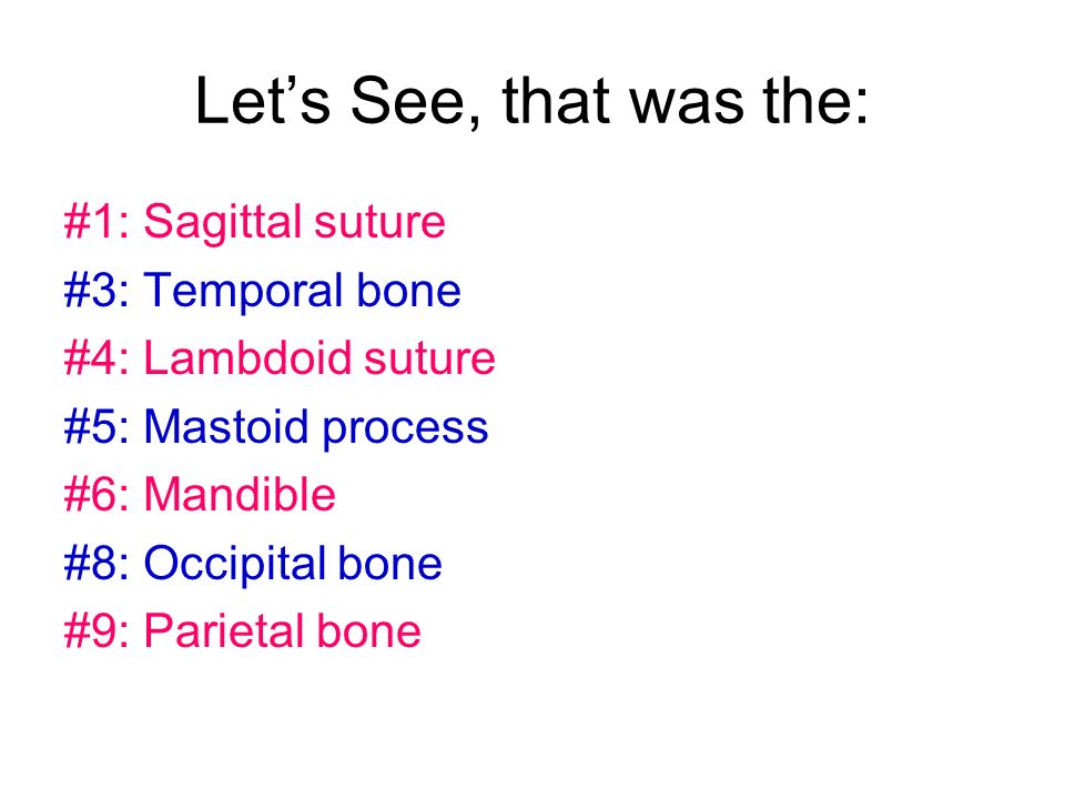 Lets See, that was the: #1: Sagittal suture #3: Temporal bone #4: Lambdoid suture #5: Mastoid process #6: Mandible #8: Occipital bone #9: Parietal bon