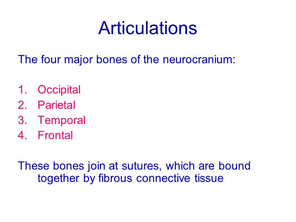Articulations The four major bones of the neurocranium: 1.Occipital 2.Parietal 3.Temporal 4.Frontal These bones join at sutures, which are bound toget
