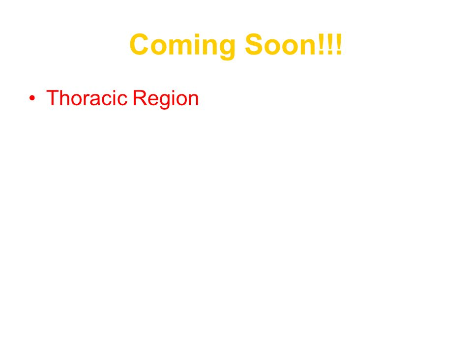 Coming Soon!!! Thoracic Region