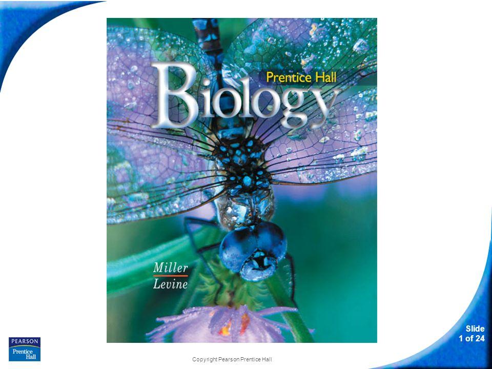 Slide 1 of 24 Copyright Pearson Prentice Hall Biology