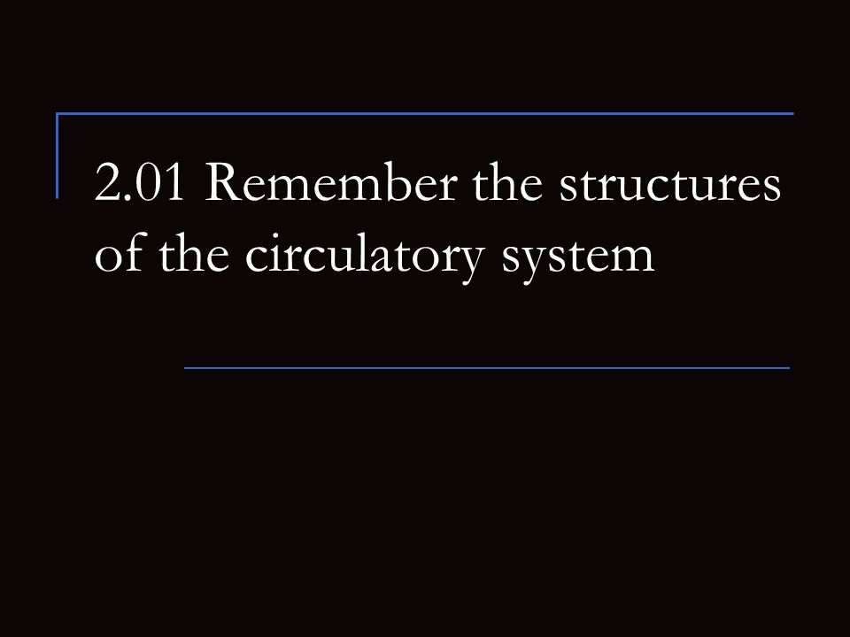 2 Essential questions What are the structures of blood.