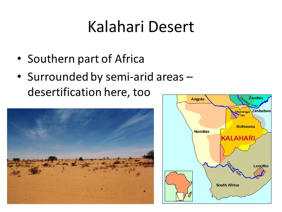 Kalahari Desert Southern part of Africa Surrounded by semi-arid areas – desertification here, too