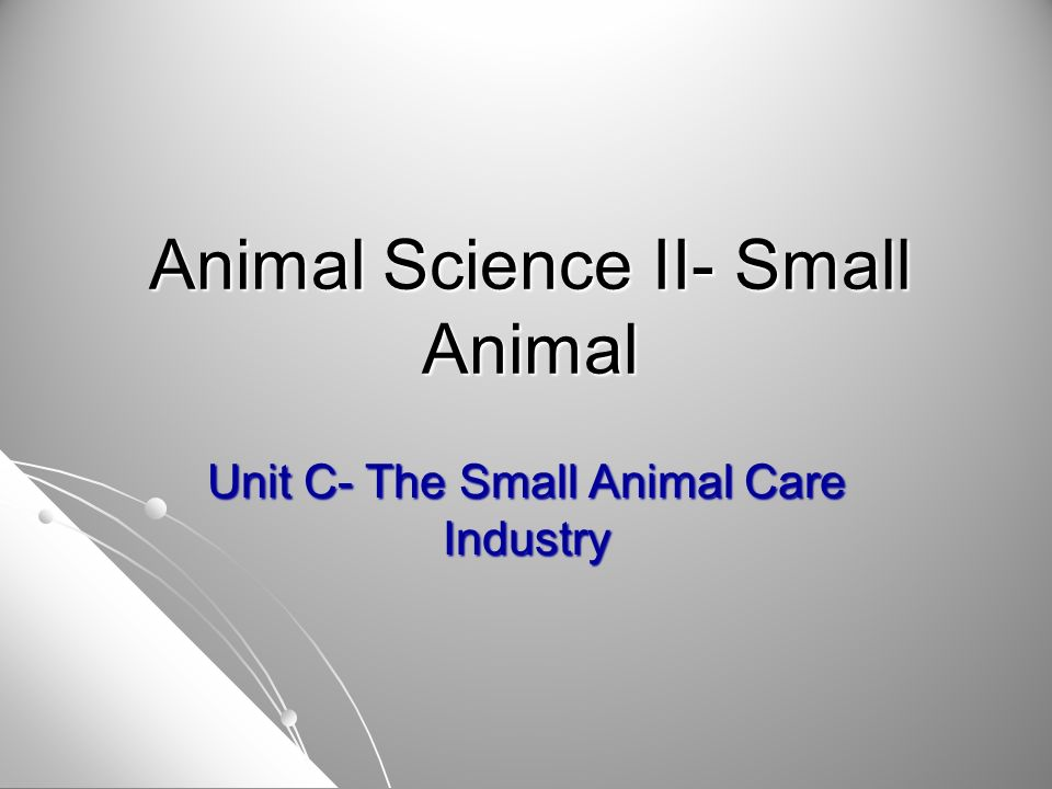 Animal Science II- Small Animal Unit C- The Small Animal Care Industry