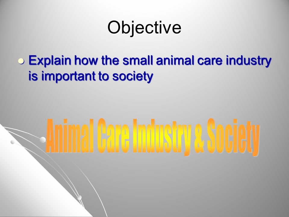 Objective Discuss the skills needed for employment in the small animal industry Discuss the skills needed for employment in the small animal industry