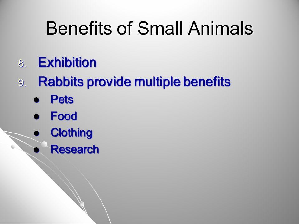 Economics 1.1. Retail pet stores 1. $21 billion in sales 2.