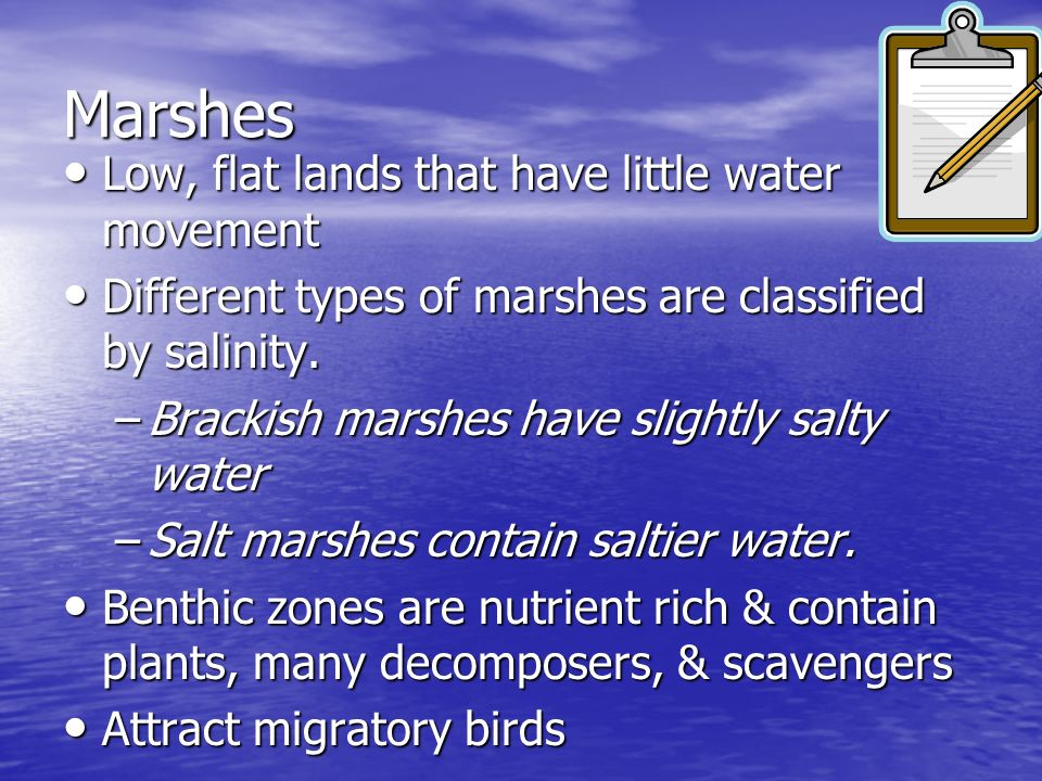 Marshes Low, flat lands that have little water movement Low, flat lands that have little water movement Different types of marshes are classified by s