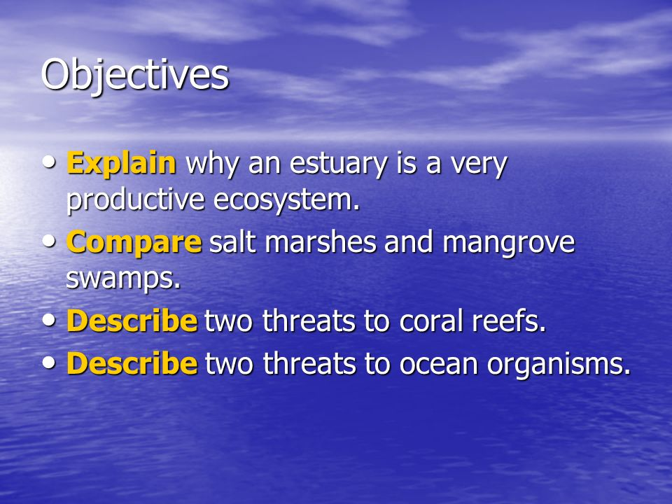 Objectives Explain why an estuary is a very productive ecosystem. Explain why an estuary is a very productive ecosystem. Compare salt marshes and mang
