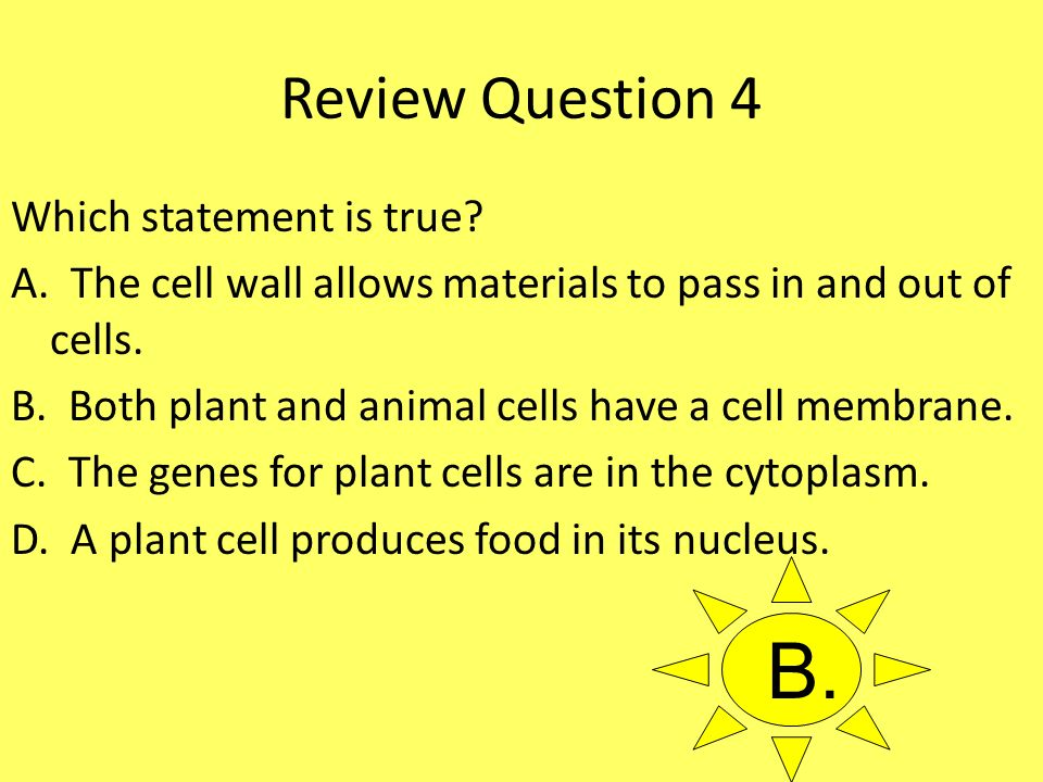 Review Question 4 Which statement is true? A. The cell wall allows materials to pass in and out of cells. B. Both plant and animal cells have a cell m