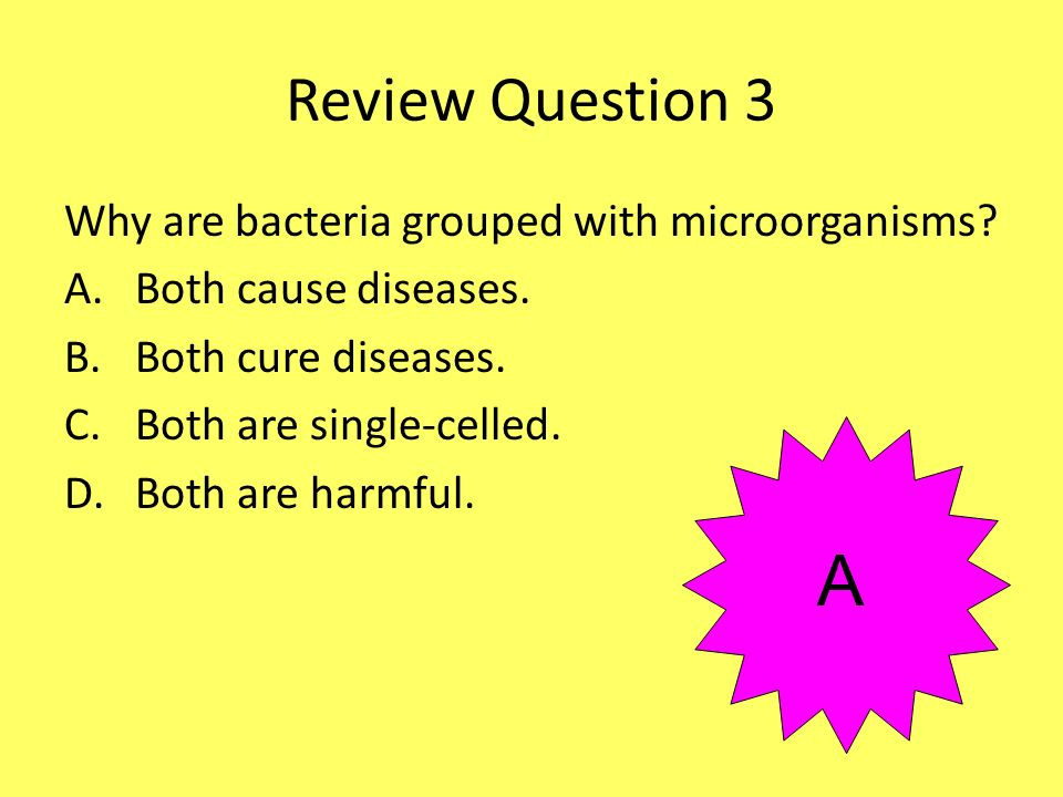 Review Question 3 Why are bacteria grouped with microorganisms? A.Both cause diseases. B.Both cure diseases. C.Both are single-celled. D.Both are harm