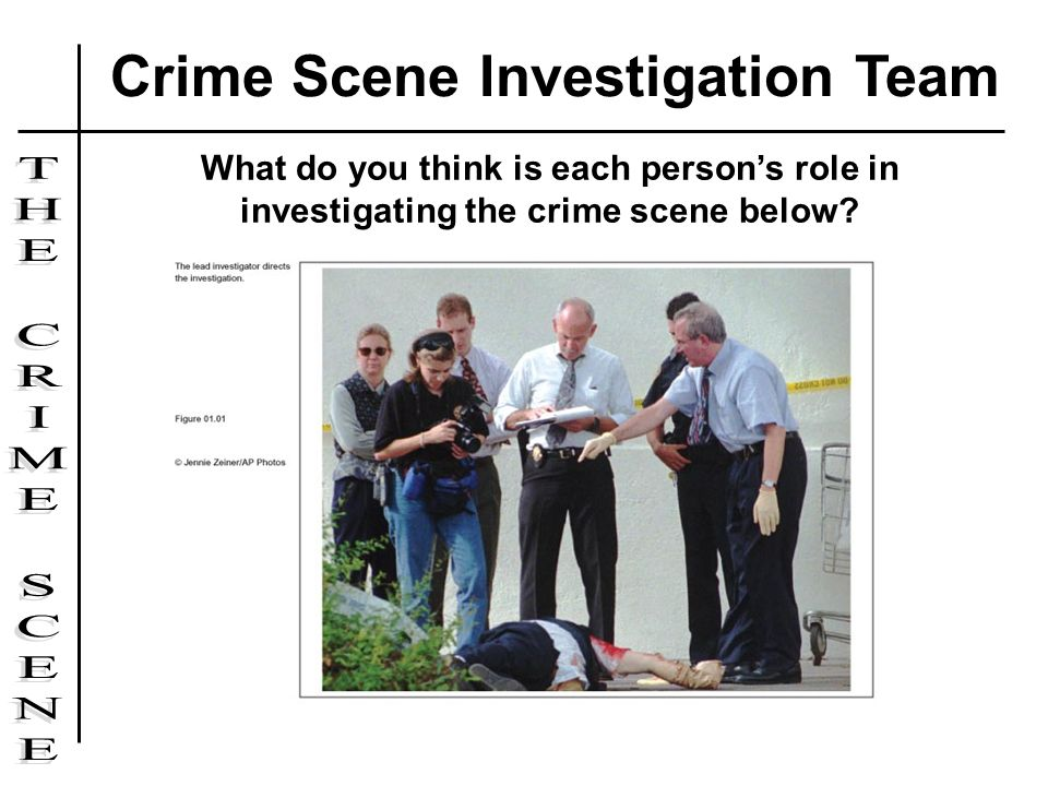 What do you think is each persons role in investigating the crime scene below? Crime Scene Investigation Team