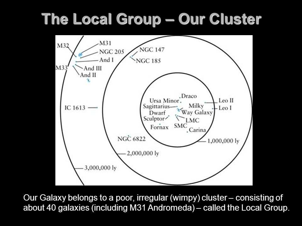 The Local Group – Our Cluster Our Galaxy belongs to a poor, irregular (wimpy) cluster – consisting of about 40 galaxies (including M31 Andromeda) – ca