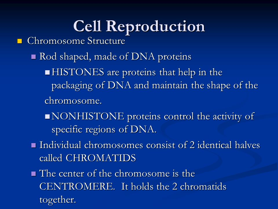 Cell Reproduction Chromosome Structure Chromosome Structure Rod shaped, made of DNA proteins Rod shaped, made of DNA proteins HISTONES are proteins th