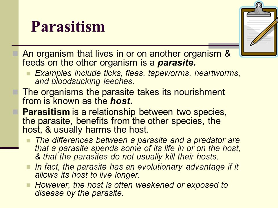 Parasitism An organism that lives in or on another organism & feeds on the other organism is a parasite. Examples include ticks, fleas, tapeworms, hea