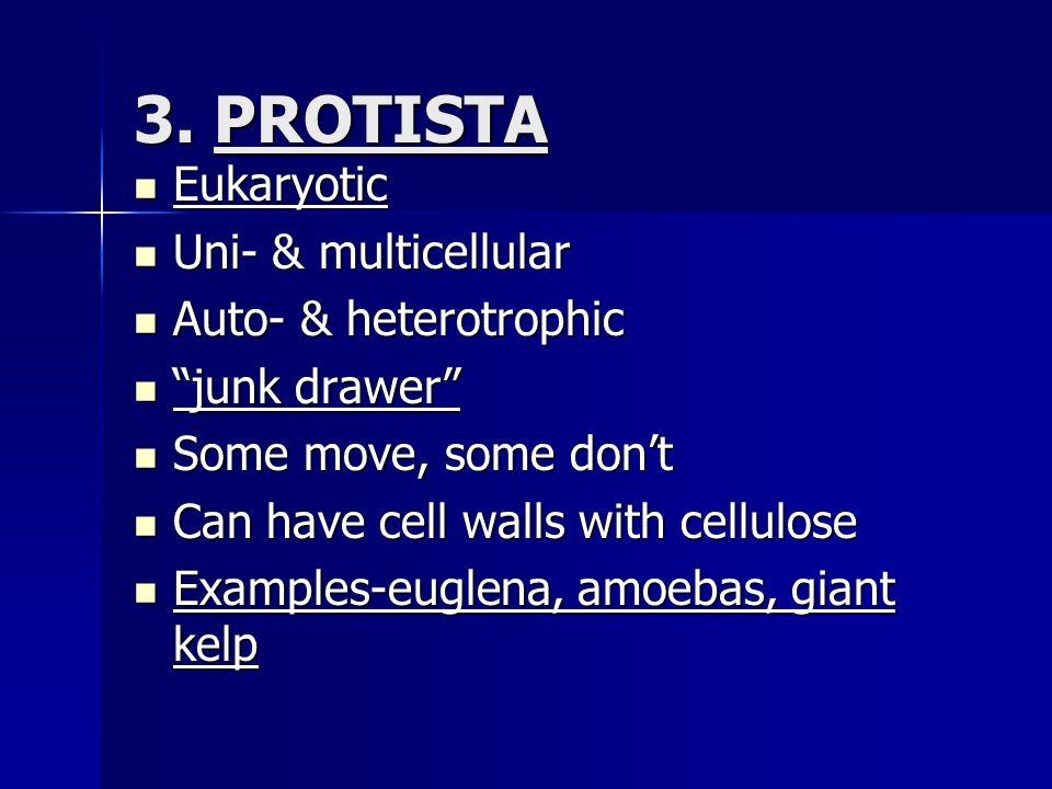 3. PROTISTA Eukaryotic Eukaryotic Uni- & multicellular Uni- & multicellular Auto- & heterotrophic Auto- & heterotrophic junk drawer junk drawer Some m