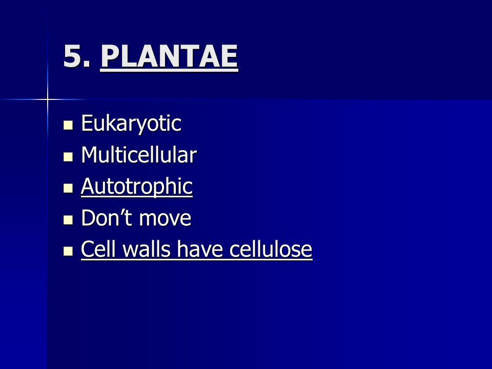 5. PLANTAE Eukaryotic Eukaryotic Multicellular Multicellular Autotrophic Autotrophic Dont move Dont move Cell walls have cellulose Cell walls have cel