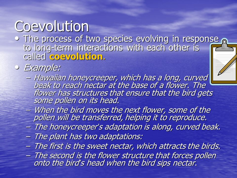Coevolution The process of two species evolving in response to long-term interactions with each other is called coevolution. The process of two specie