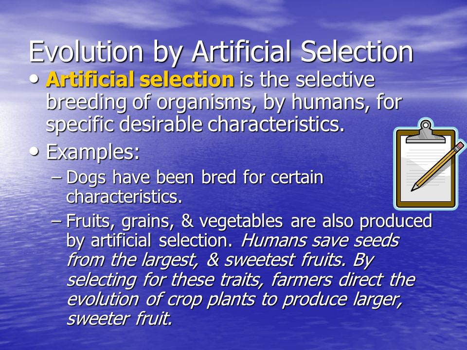 Evolution by Artificial Selection Artificial selection is the selective breeding of organisms, by humans, for specific desirable characteristics. Arti