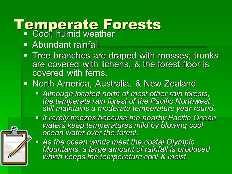 Temperate Forests Cool, humid weather Cool, humid weather Abundant rainfall Abundant rainfall Tree branches are draped with mosses, trunks are covered