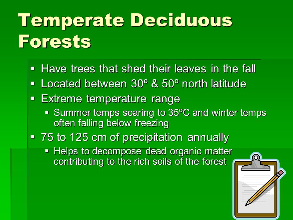 Temperate Deciduous Forests Have trees that shed their leaves in the fall Have trees that shed their leaves in the fall Located between 30º & 50º nort