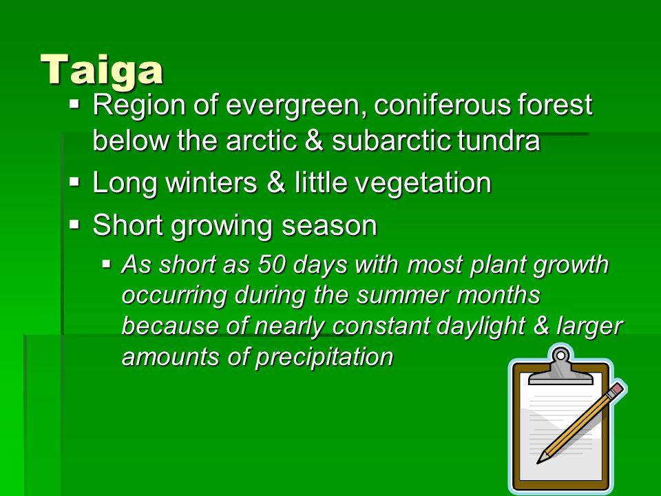 Taiga Region of evergreen, coniferous forest below the arctic & subarctic tundra Region of evergreen, coniferous forest below the arctic & subarctic t