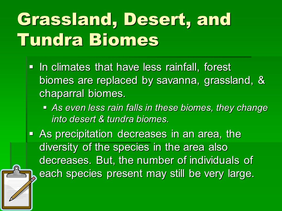 Grassland, Desert, and Tundra Biomes In climates that have less rainfall, forest biomes are replaced by savanna, grassland, & chaparral biomes. In cli