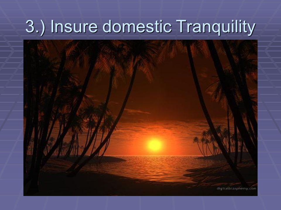 3.) Insure domestic Tranquility
